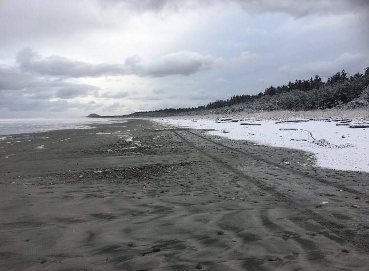 Life is a beach - on Masset - 2020
